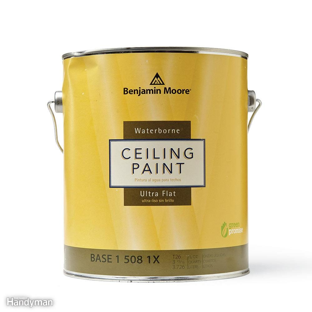 Buy Special Ceiling Paint