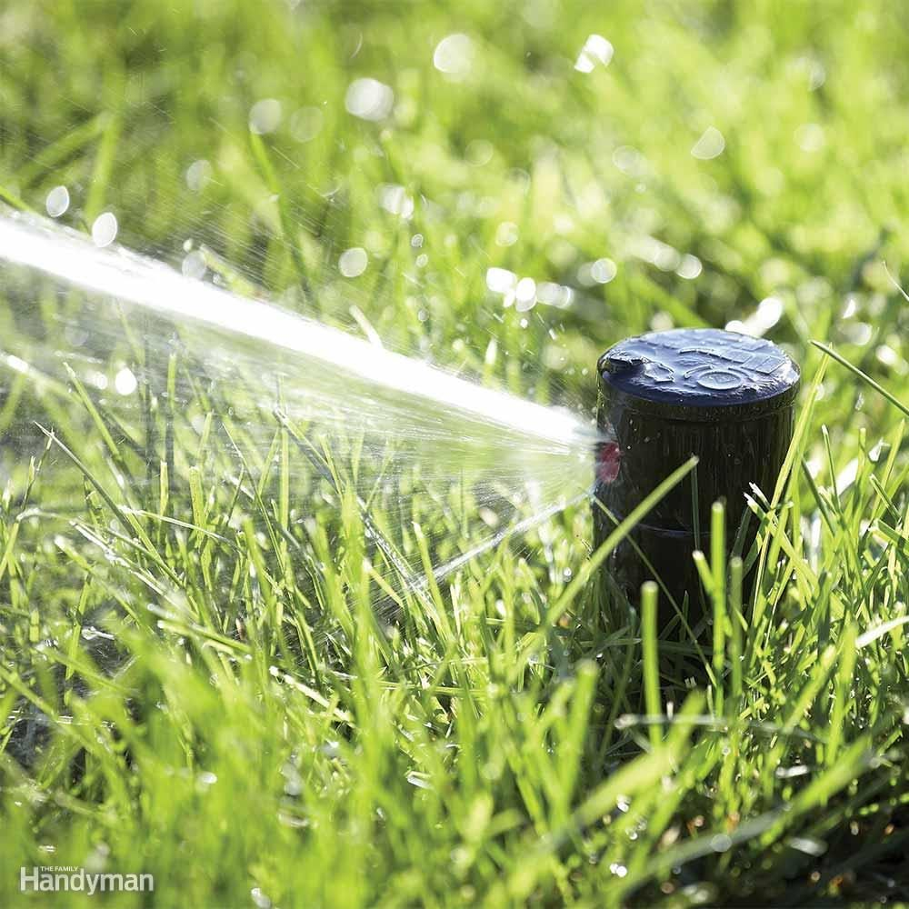 Best Way to Water Lawn: Lawn Watering Wisdom