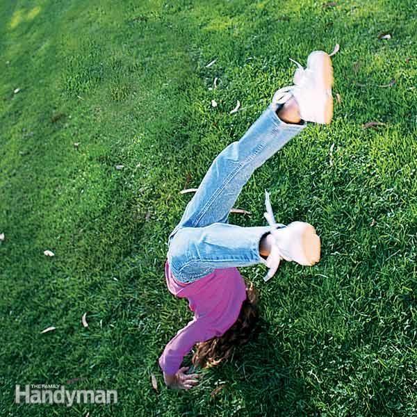 lawn care tips yard maintenance lawn maintenance