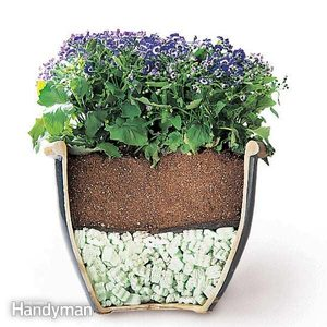 Tips for Moving Heavy Potted Plants