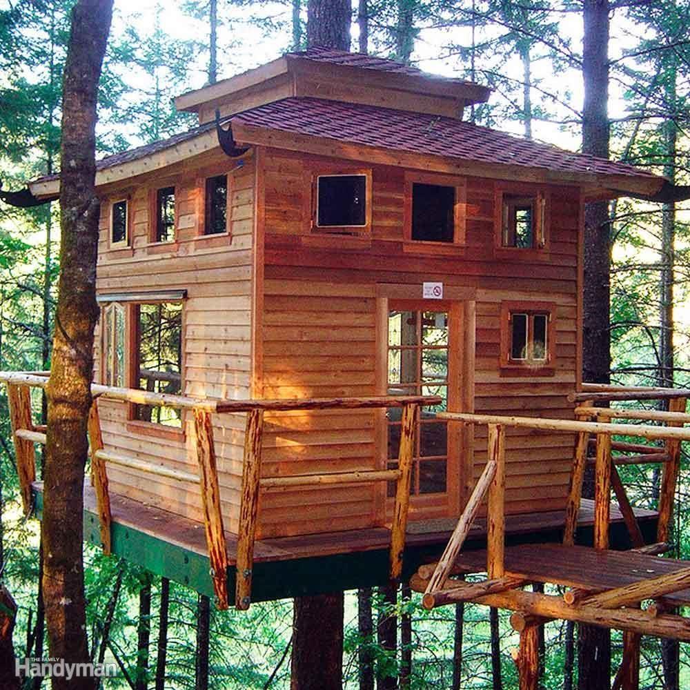Install a Tree House