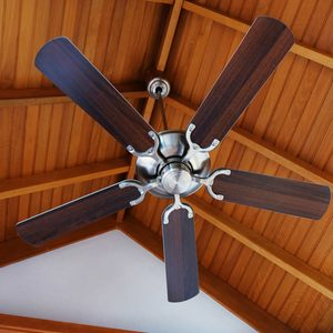 Which Direction Should My Ceiling Fan Spin?