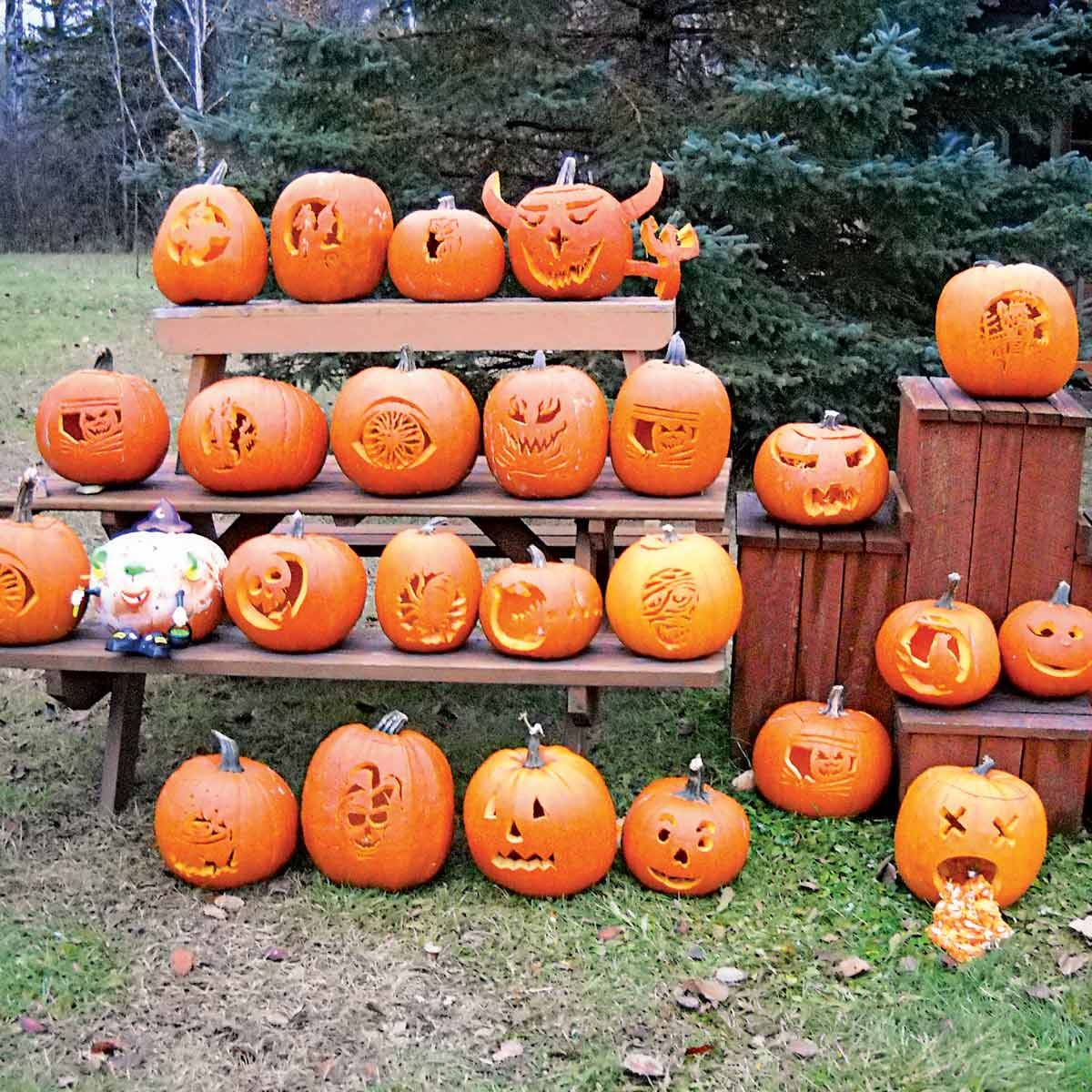 Host a Pumpkin Carving Party