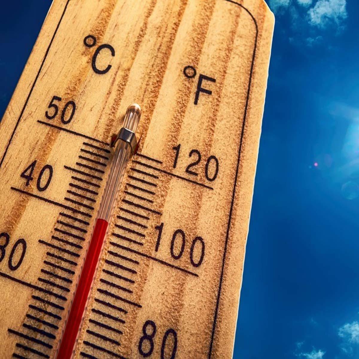 Track Temperature