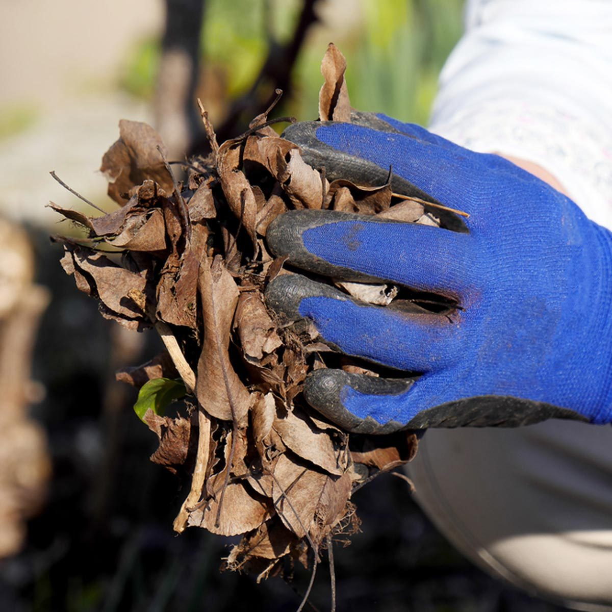 Durable, Waterproof Garden Gloves