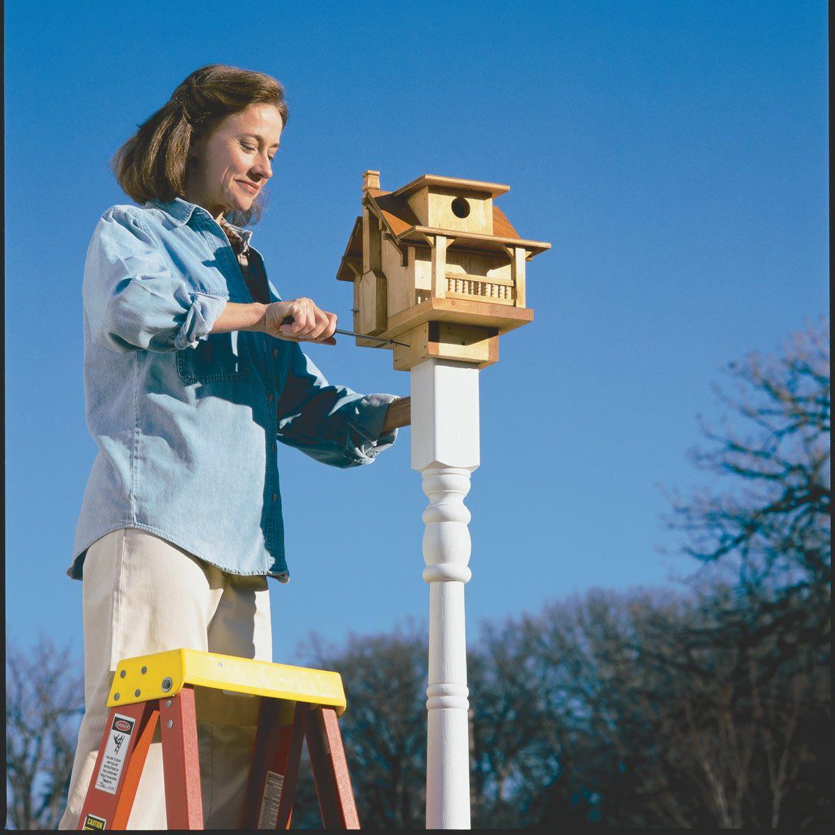 Build a Birdhouse