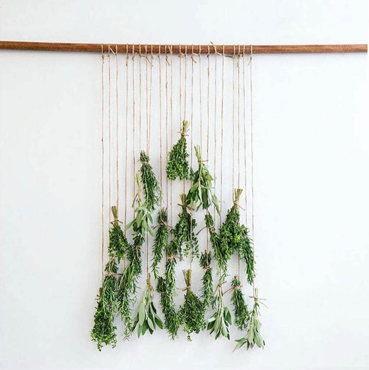 Hanging Twigs