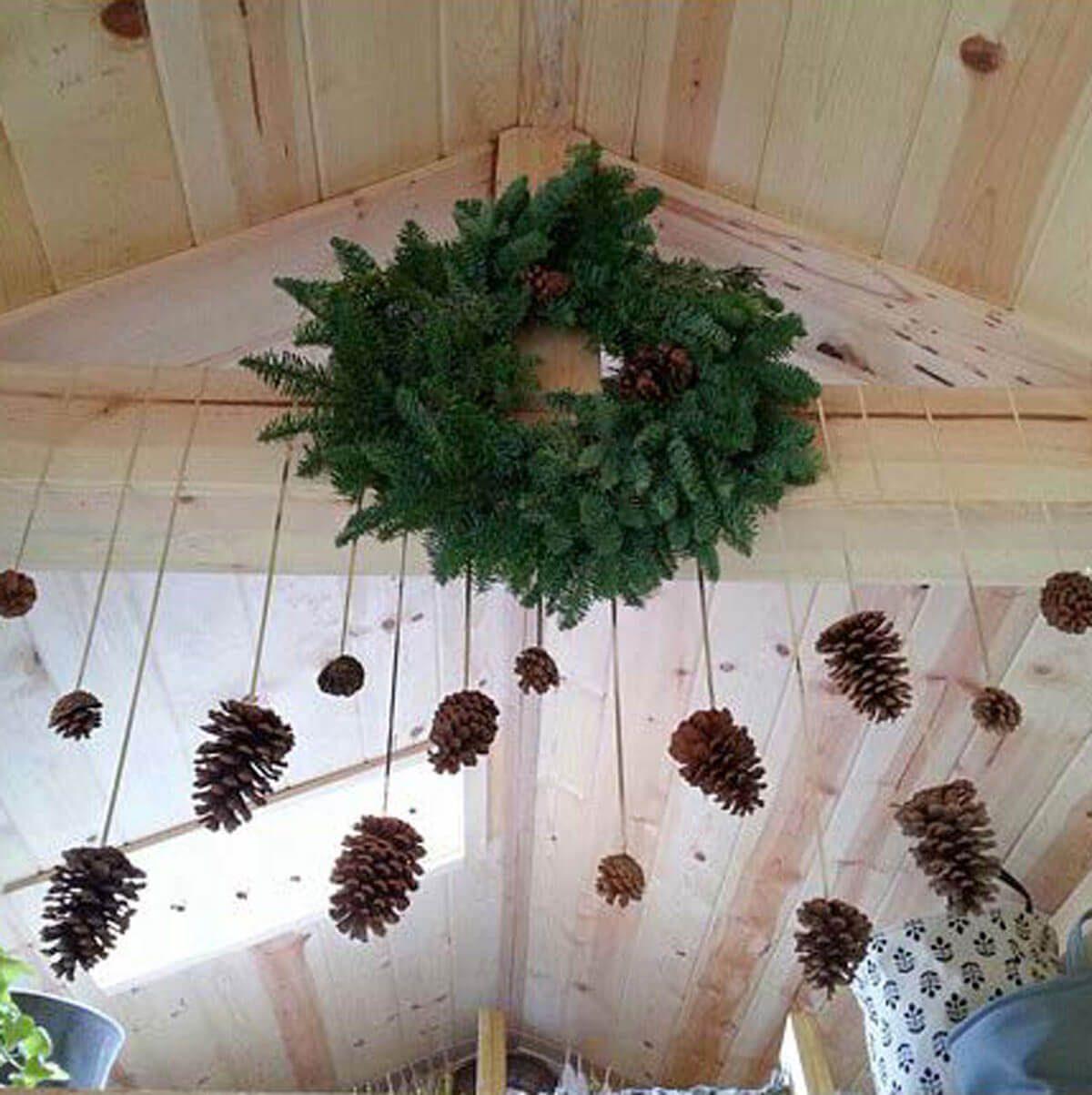 Dangling Pinecones