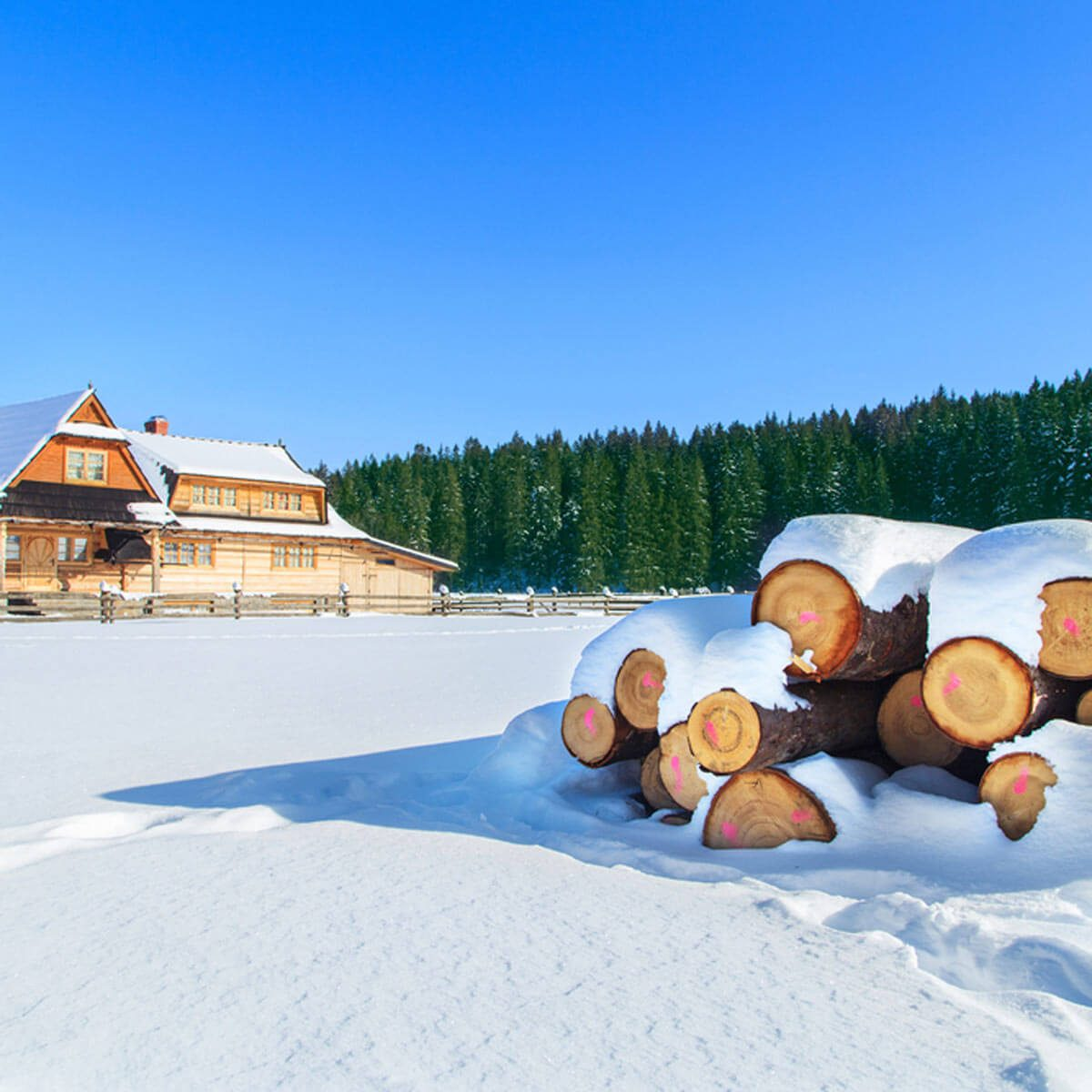 Keep Wood Piles Away From Your House