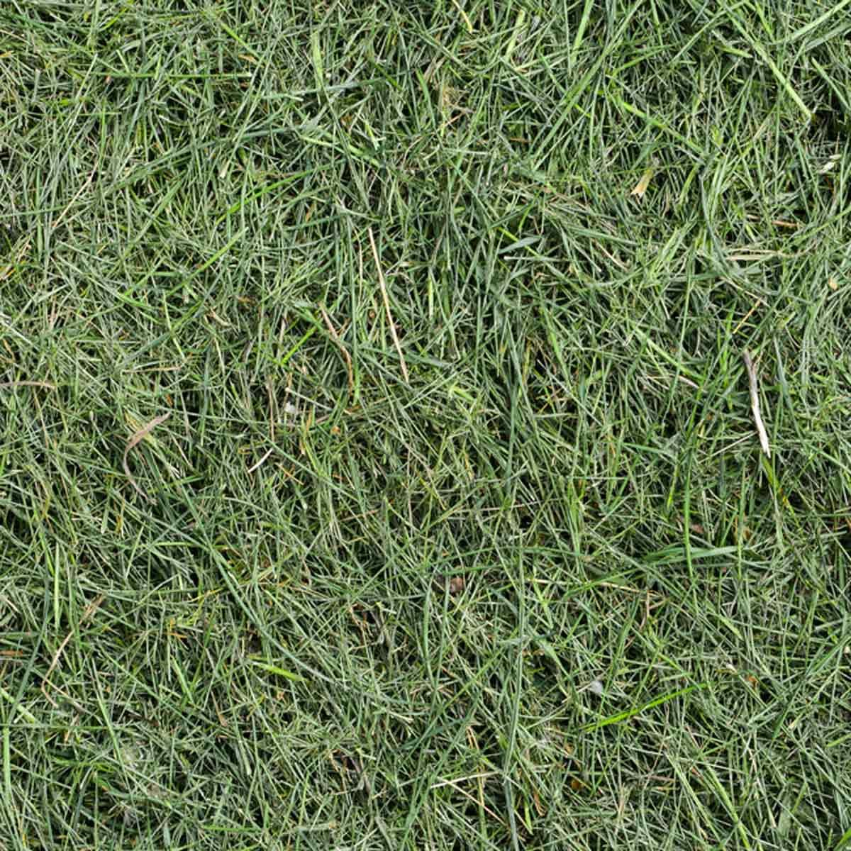 Recycle Grass Clippings