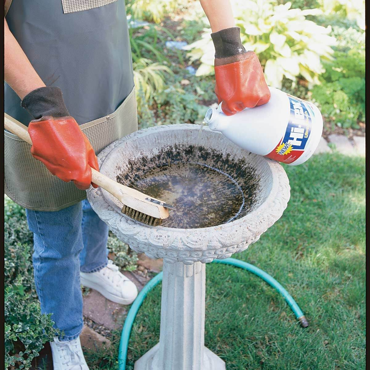 Clean a Bird Bath