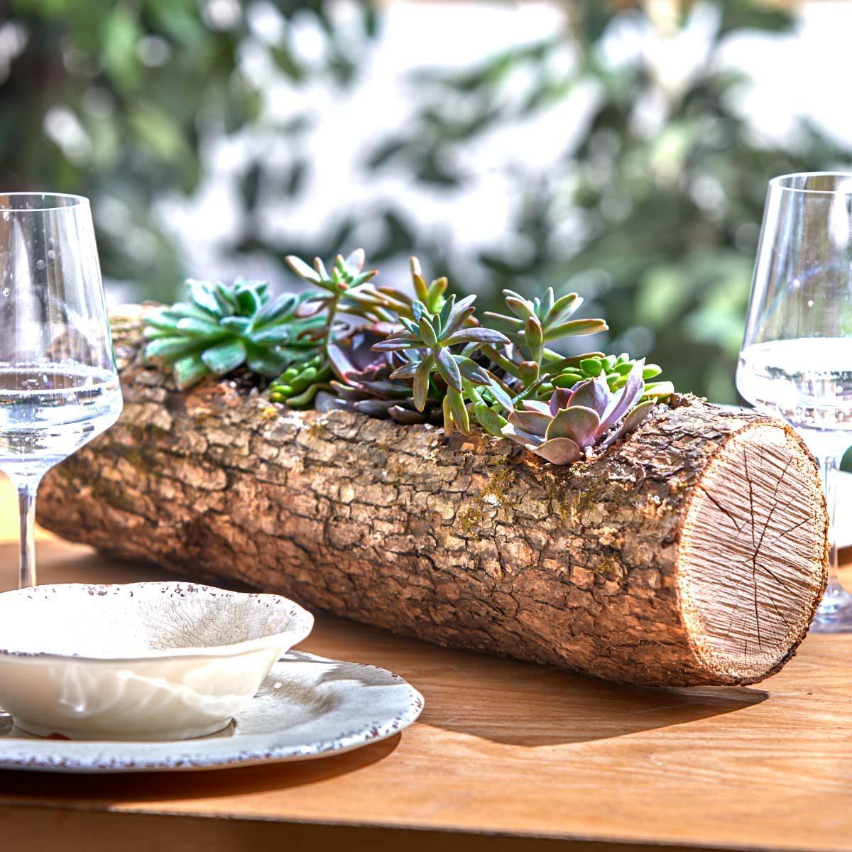 succulent wood log planter finished shot