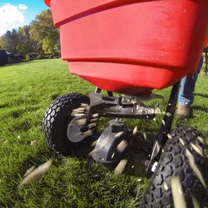How to Fertilize Your Lawn