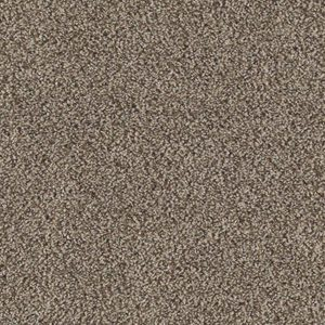 Everything You Need to Know About Triexta Carpet
