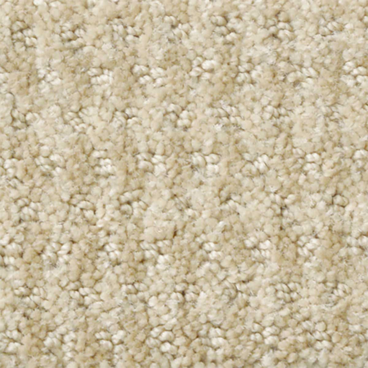 photo of a Stainmaster nylon carpet sample