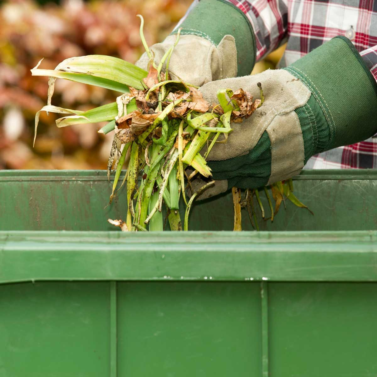 Disposing of yard waste in a collection bin