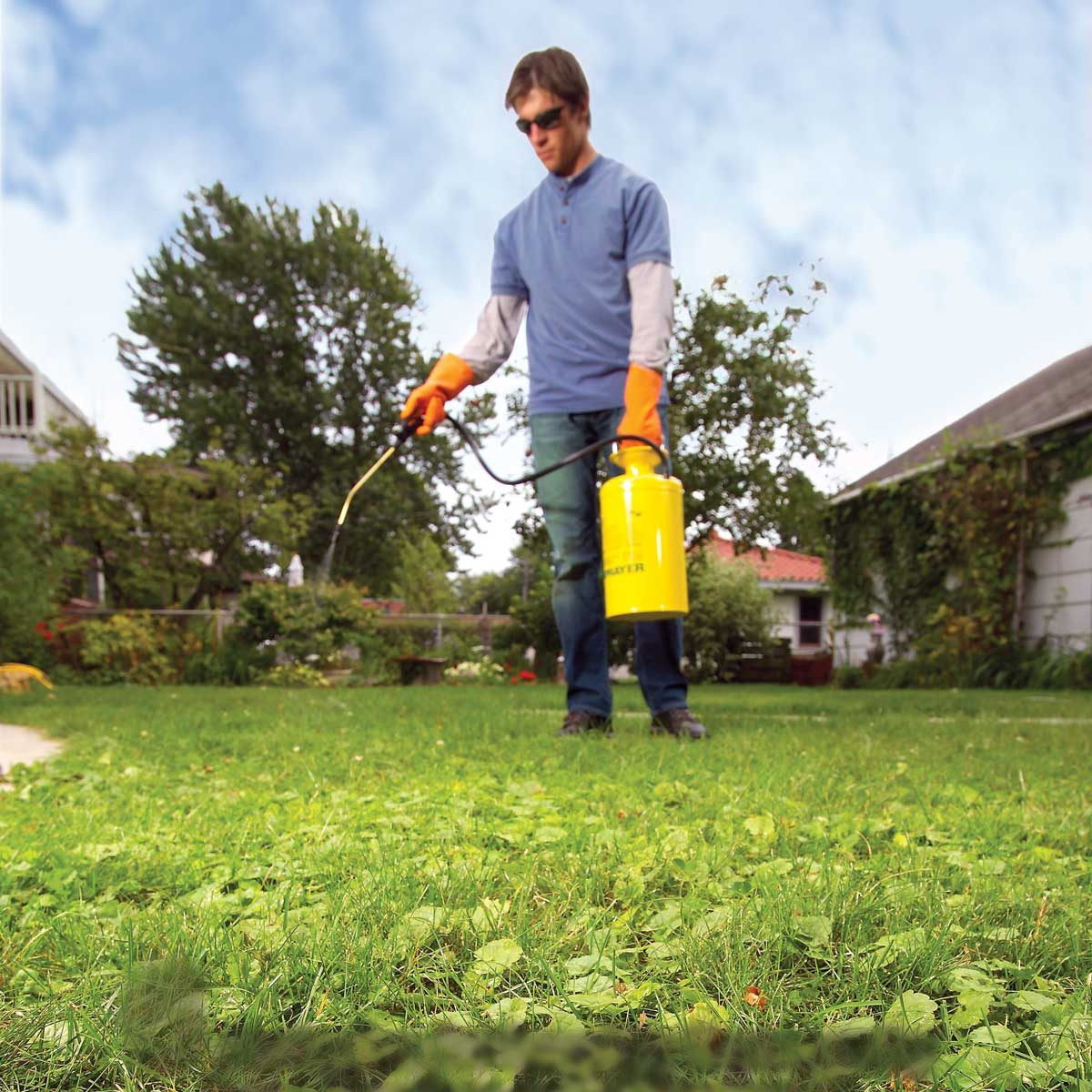 Spraying weeds