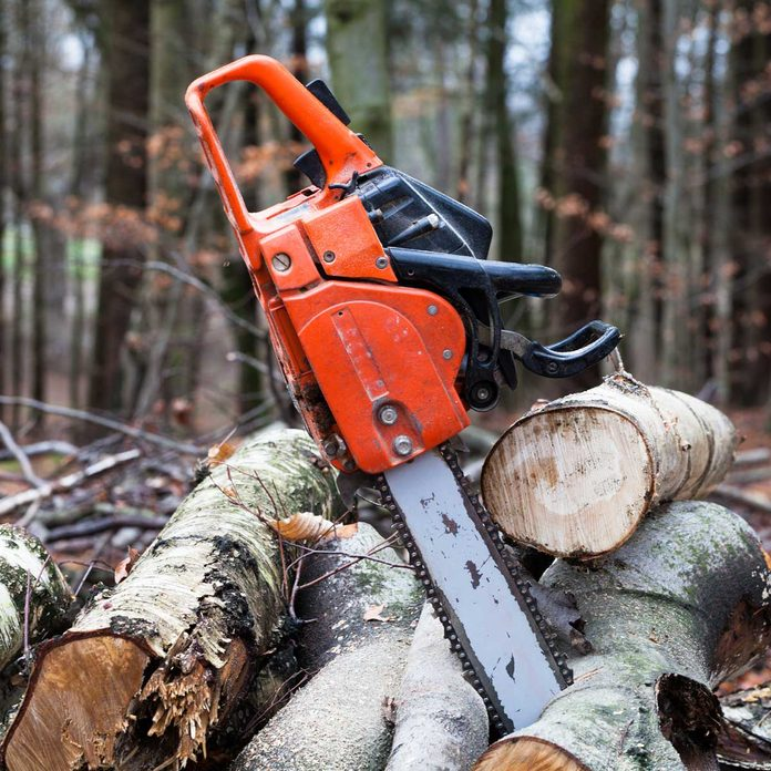 Chainsaw leaning against wood