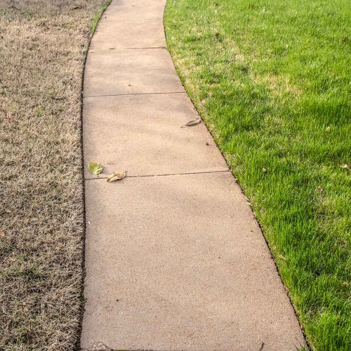 Sidewalk with healthy grass on one side