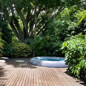What to Know About Plunge Pools