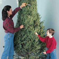 trimming christmas tree more