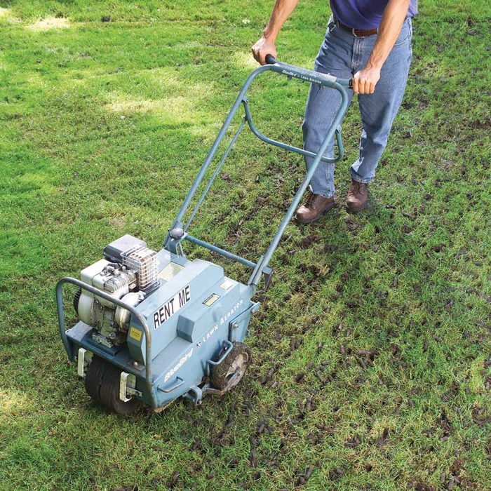 Aerate the Soil