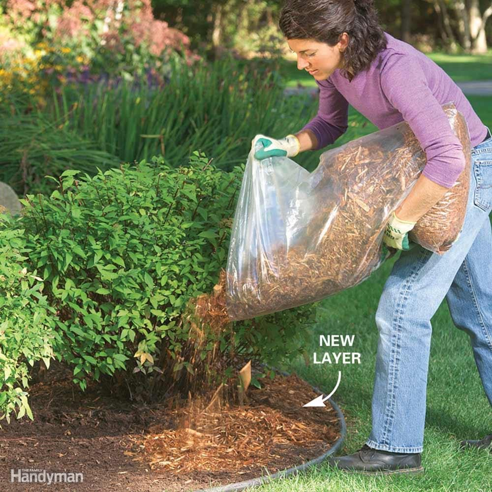 Will Mulch Stop Weeds?