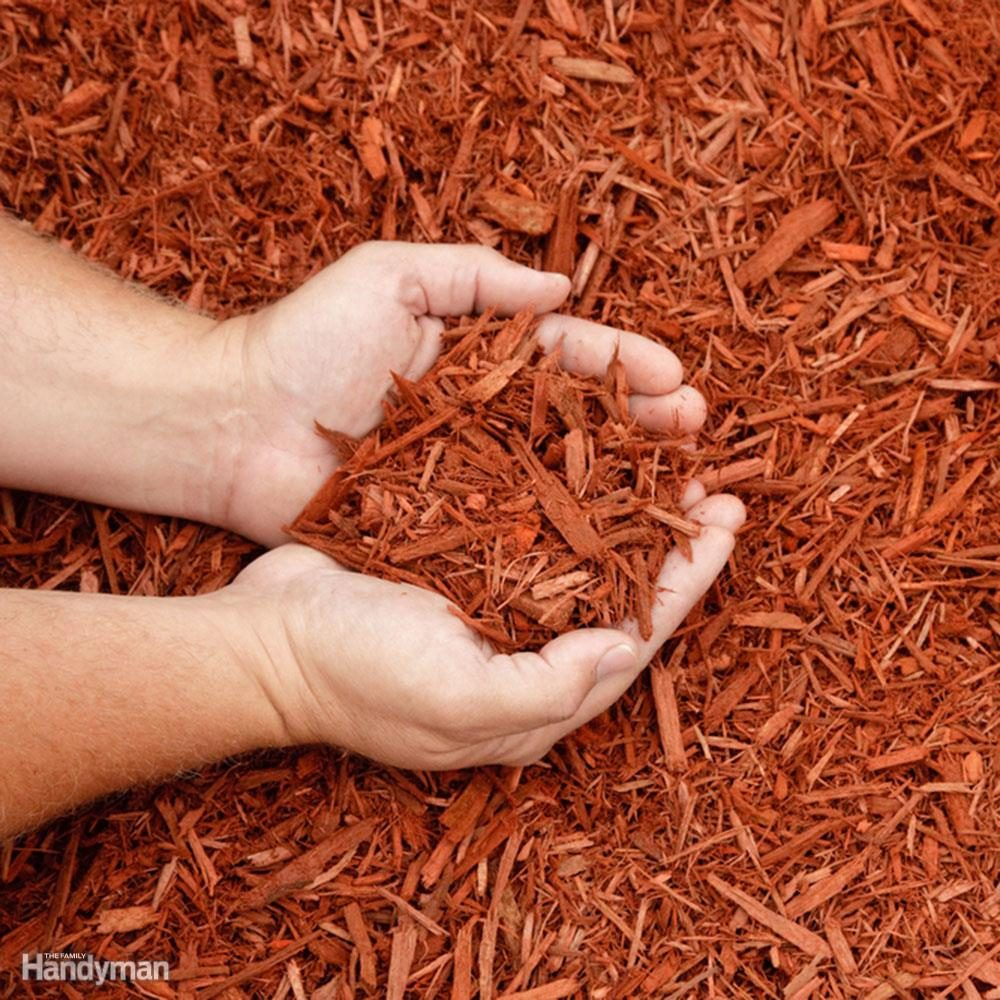 Ground Cover Alternatives to Grass: Mulch