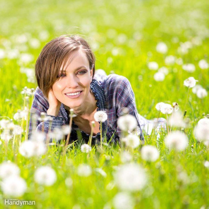 Ground Cover Alternatives to Grass: Garden Meadow