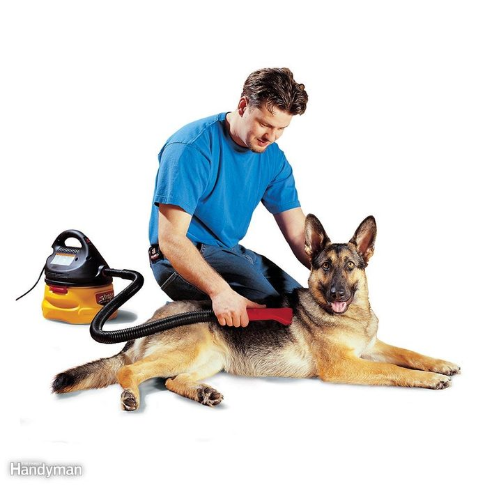 Don't Brush the Dog ? Use a Vacuum Instead!