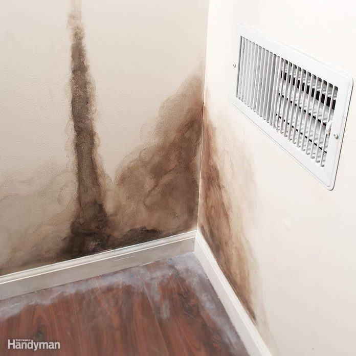 Missing Insulation Feeds Mold