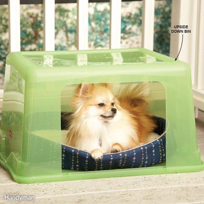 Rainy-Day Doghouse