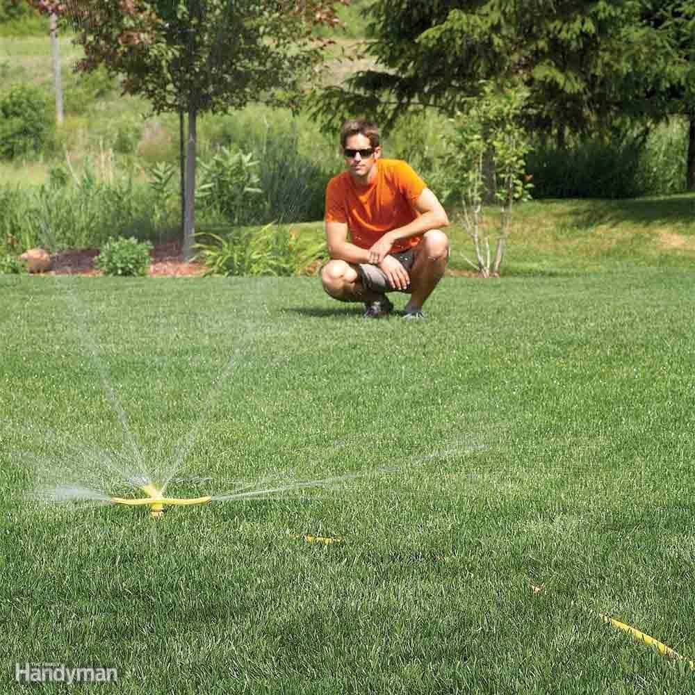 lush lawn care