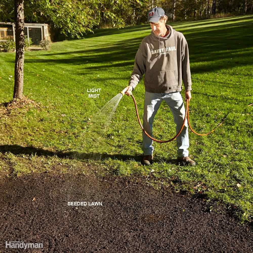 Best Way to Water Lawn: Water Grass Seed Carefully