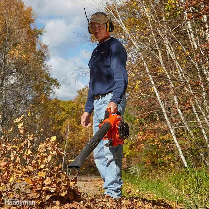 Is a Gas Blower Model the Best Leaf Blower for You?