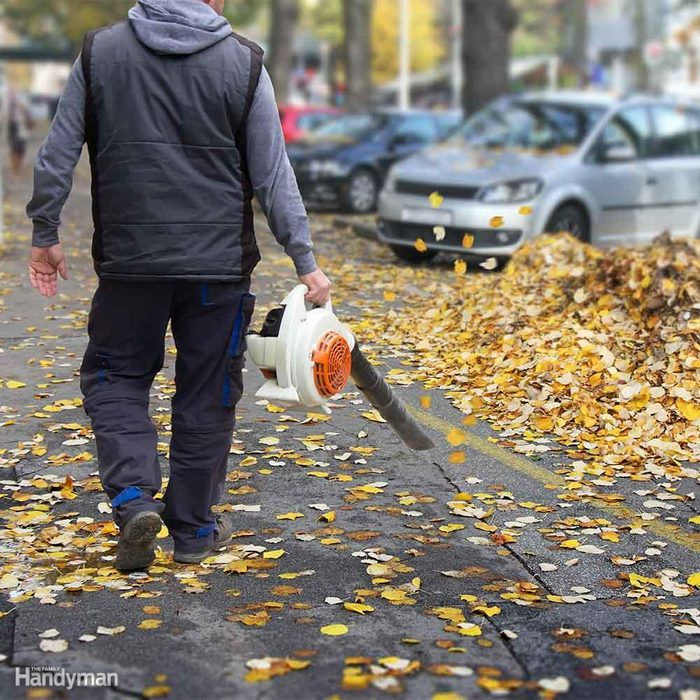 Take Care of Those Leaves