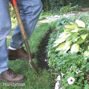 Natural Mulch Landscape Edging