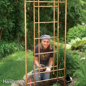 How to Build a Copper Trellis for Your Garden