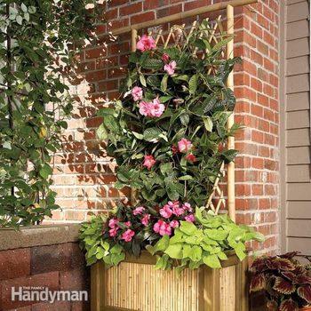 bamboo planter box and trellis