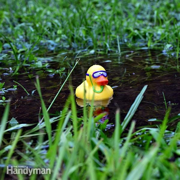 FH16APR_SOGGYA_01-3 standing water in yard