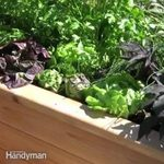 How to Build a Sub Irrigated Planter System