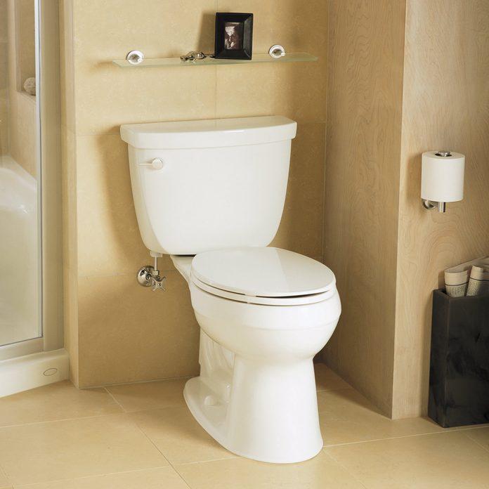 Deep Clean Your Toilet