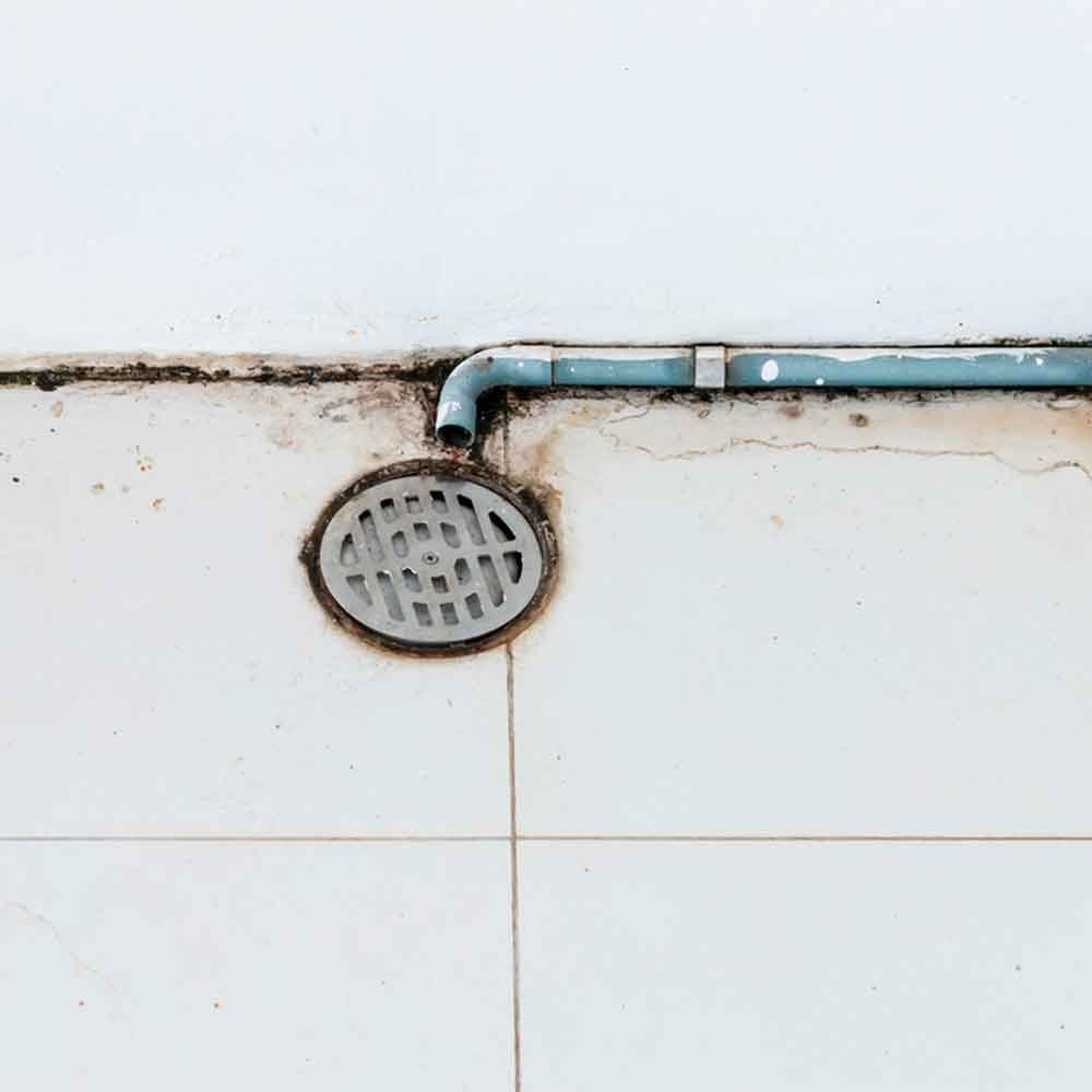 Not Checking Your Drain