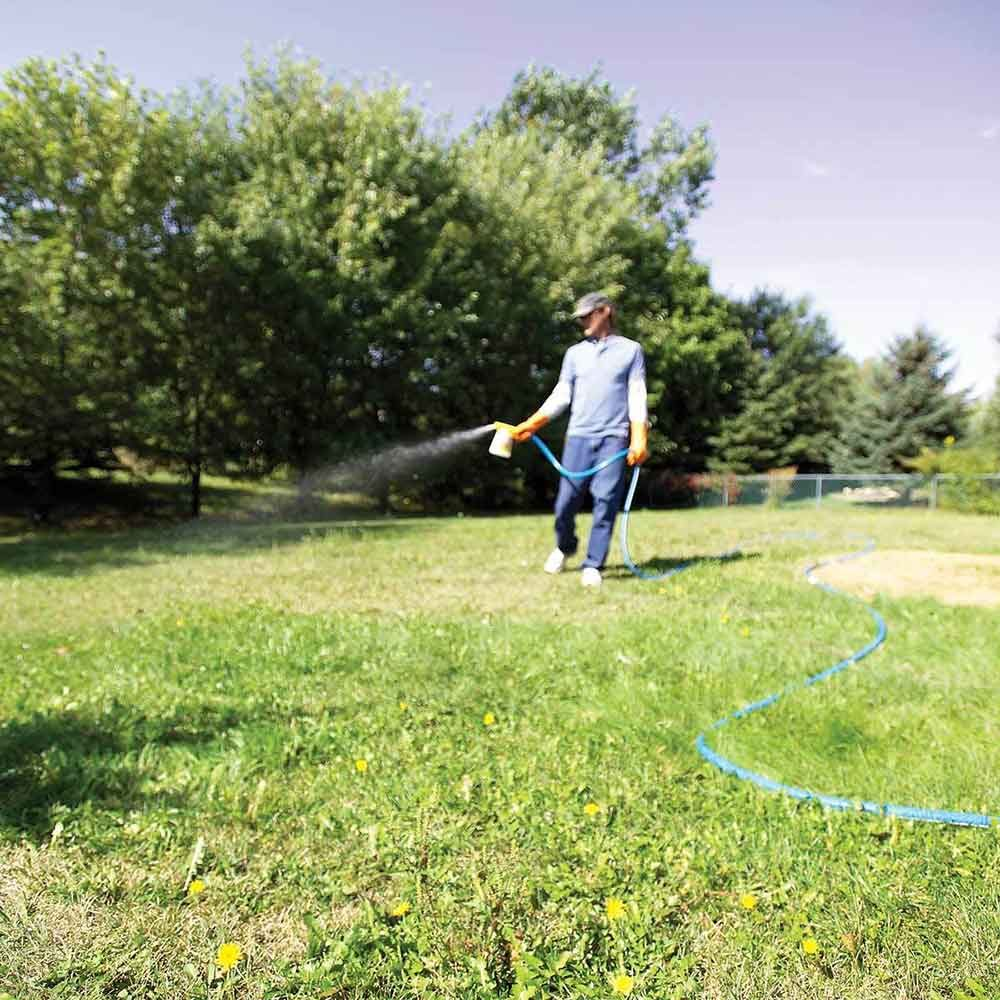 Use liquid broadleaf weed killers