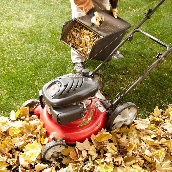 Mower Leaf Collection