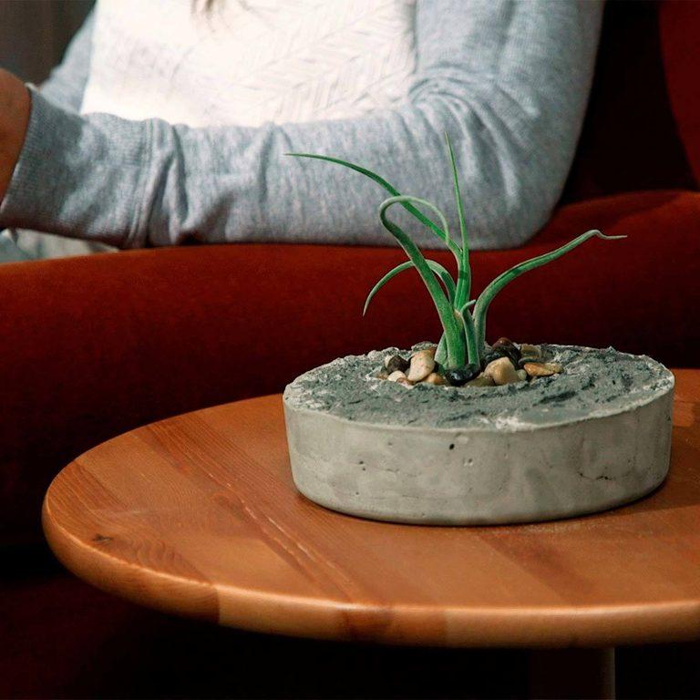 concrete air plant planter