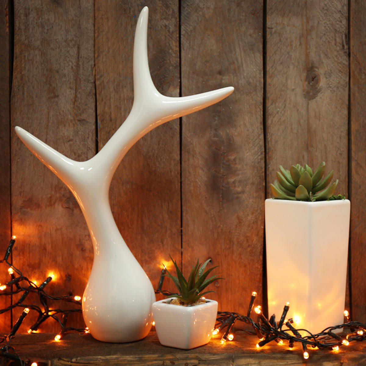 create a focal point outdoor string lights with succulents and antler decor