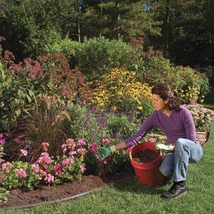 Cover Bare Soil planting flowers