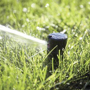 sprinkler head spraying water