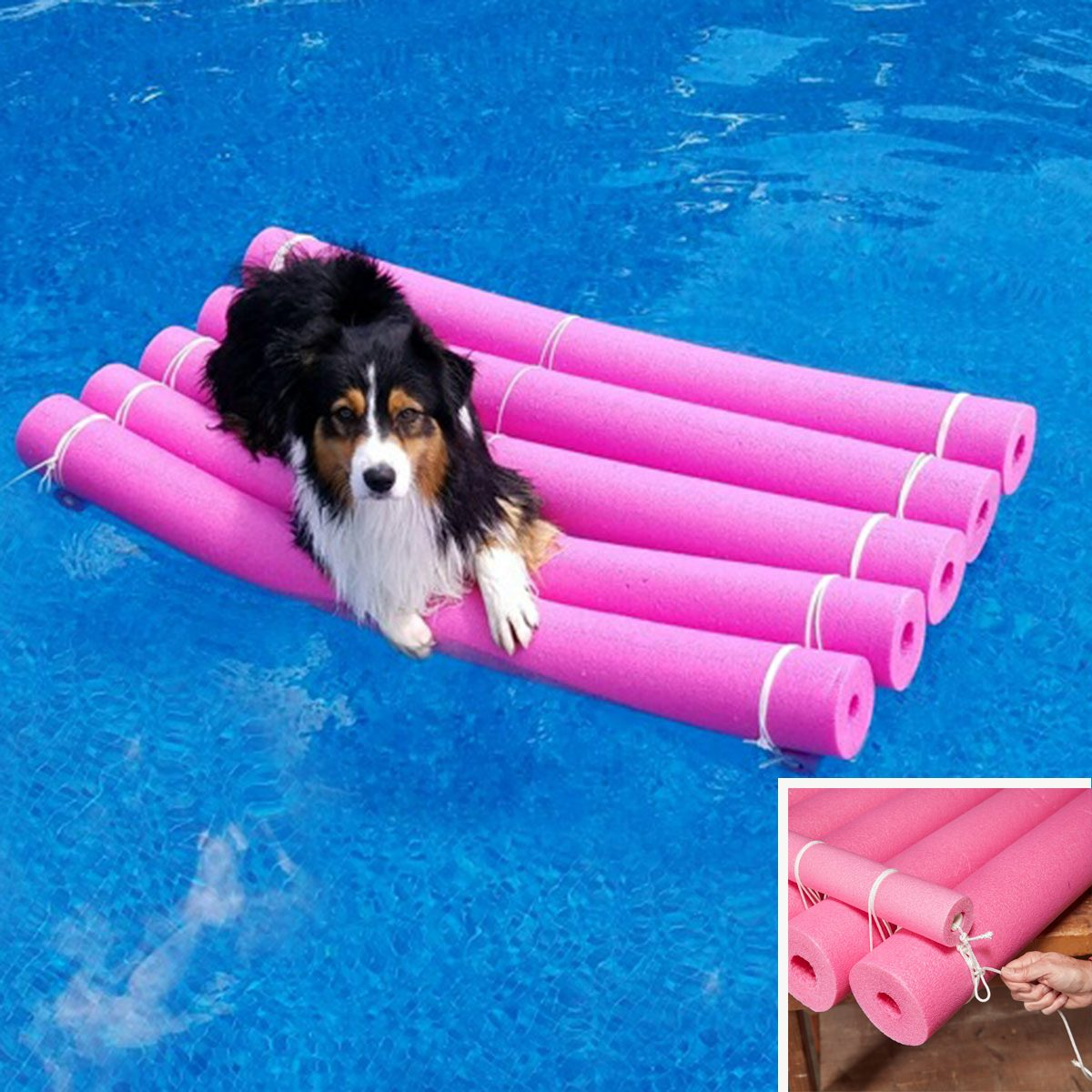 Crafty Water Raft pool noodle dog